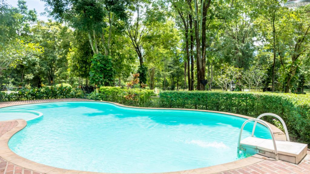 Vegetazione piscina interrata ideale